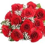 https://www.weddingsbyrevsophie.com/wp-content/uploads/2012/08/Red-Roses-3.jpg